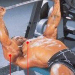 フラットバーベルベンチプレス(大胸筋)